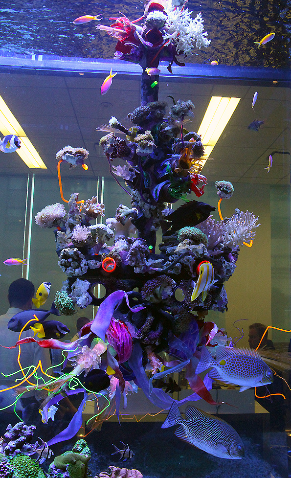 """""""Sculpting Life, A re-contextualization of the living marine reef ecosystem"""" 2014 Thermal formed plastics,24 hand cast archival images, 60 living corals, cast clear plastic 3d  fiber optic nodes,270 led's,acrylic, fiber optics,reclaimed/recycled plastics, aquatic resin, live rock, and a full marine ecosystem."""